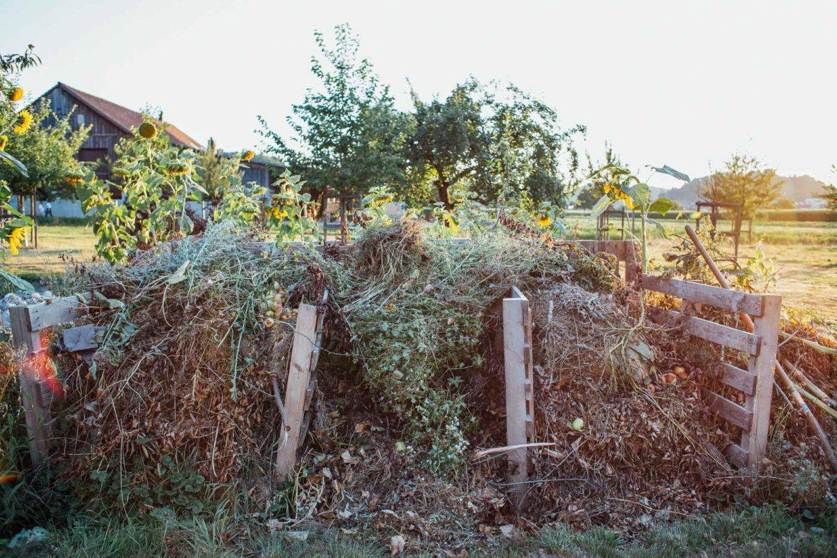 Der Kompost in angelegt