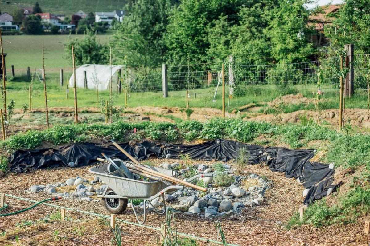 Kräutergarten mit Schubkarre und Werkzeuge