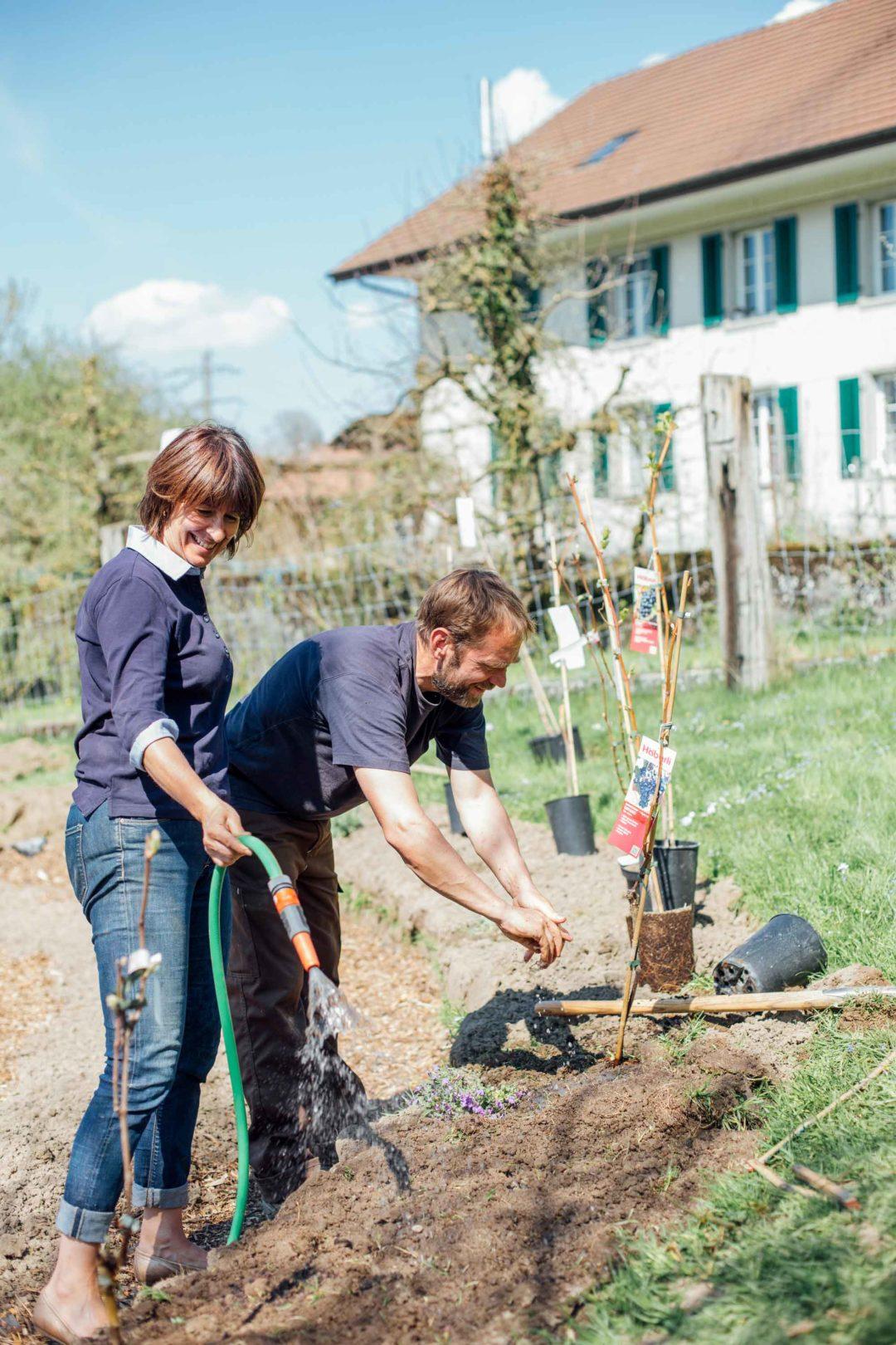 Mischi und Stefan pflegen die Pflanzen