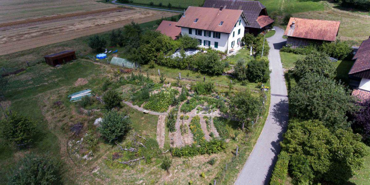 Luftaufnahme vom Garten im August 2019