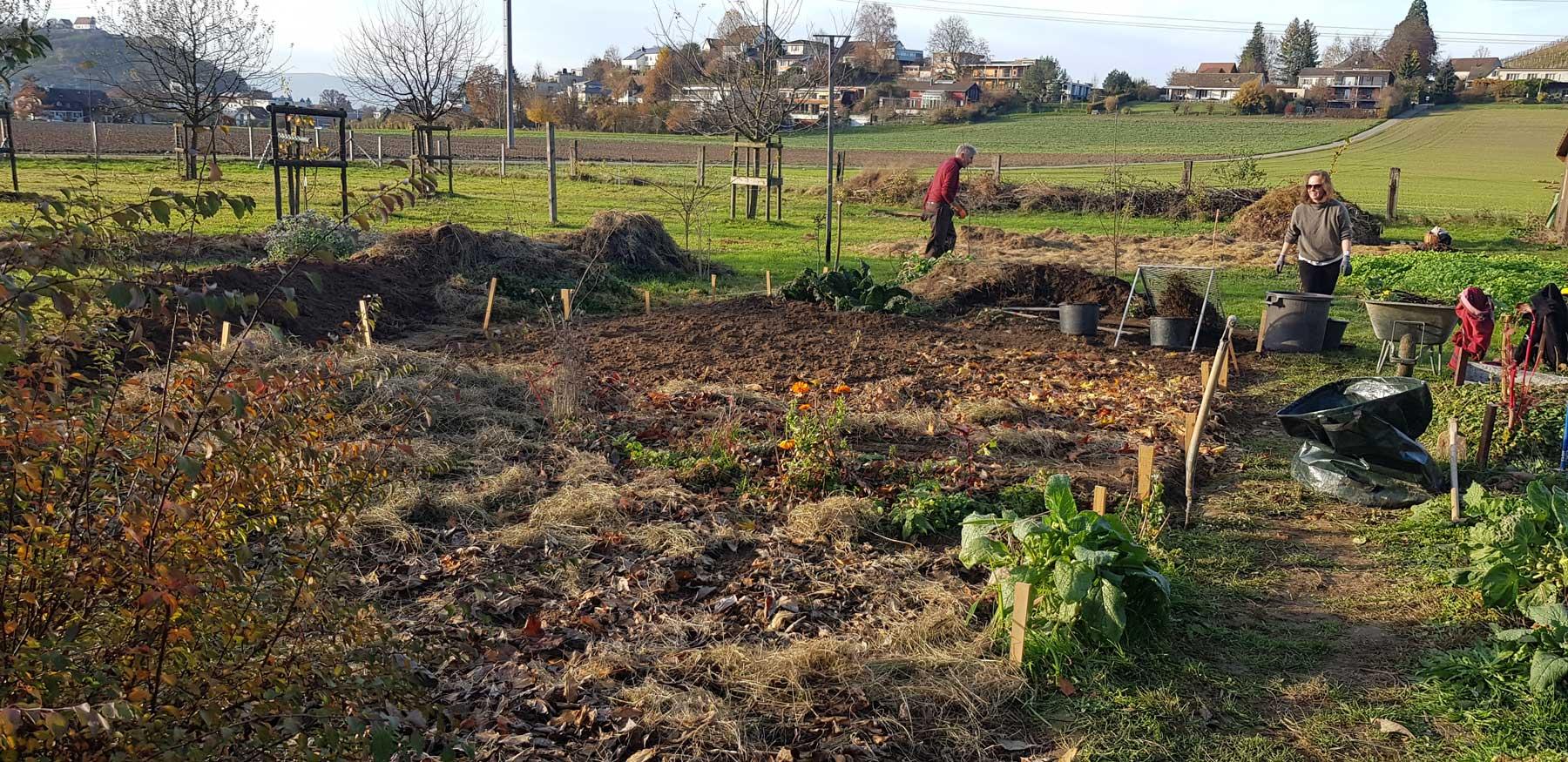 Beete werden vorbereitet für den neuen Mischkultur-Anbau