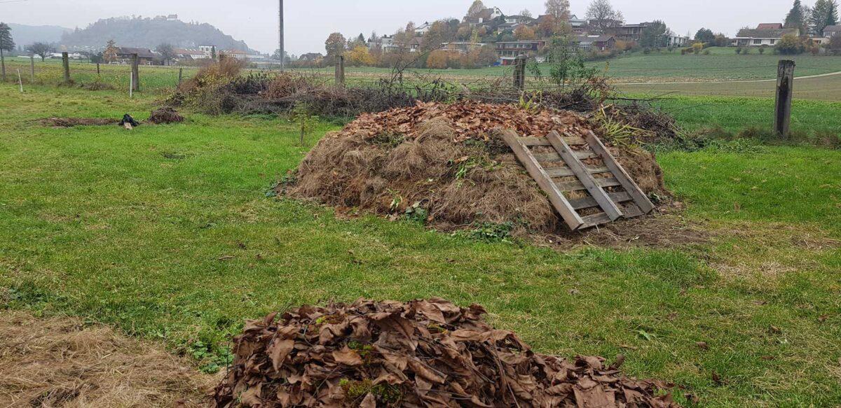 unser biodynamischer Kompost der seit Anfang Jahr aufgebaut wurde.